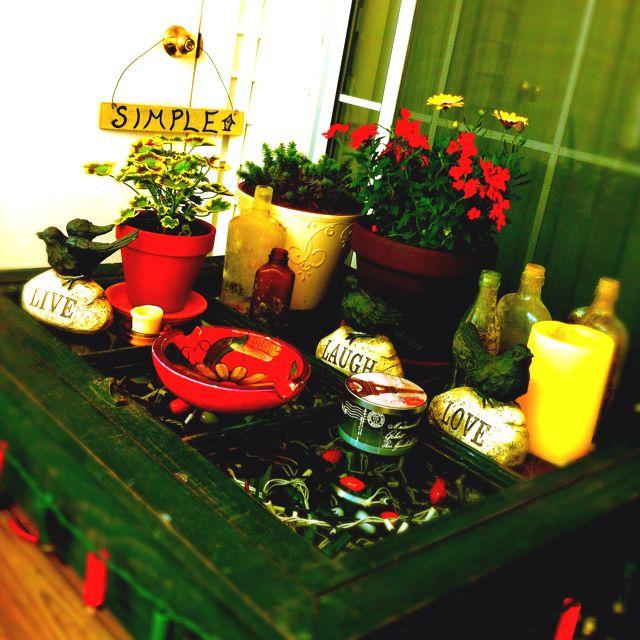My little porch garden!