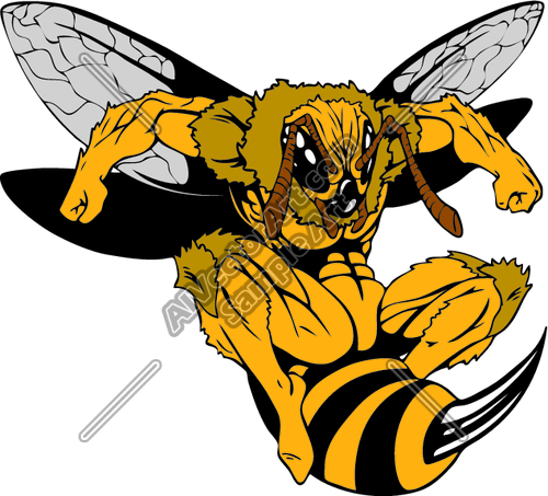 yellow jacket clipart clipartfest bee pinterest rh pinterest com fighting yellow jacket clipart clipart yellow jacket bee