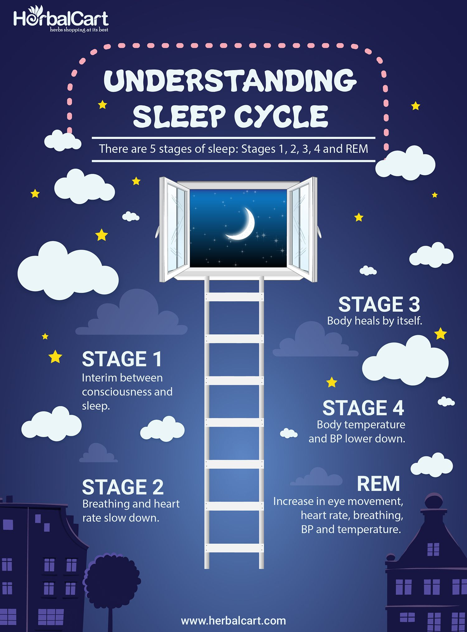 Understanding sleep cycle. There are 5 stages of sleep: Stage1, 2, 3