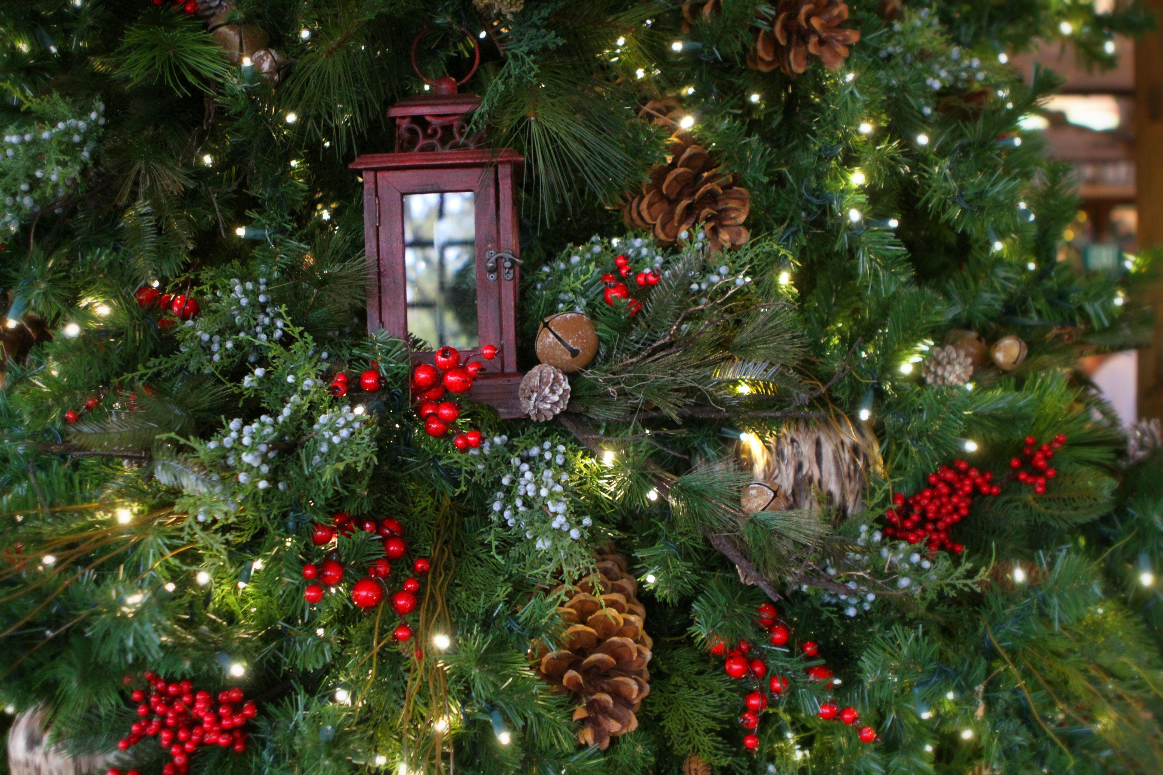 Rustic elegant christmas décor at big cedar lodge g