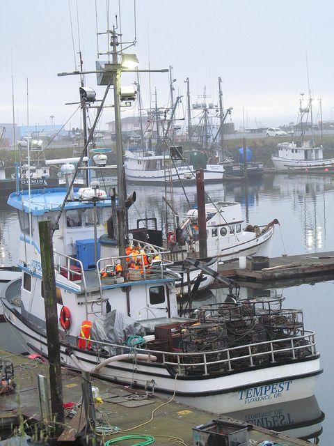 Crescent City Harbor Crescent City California Boat Fishing