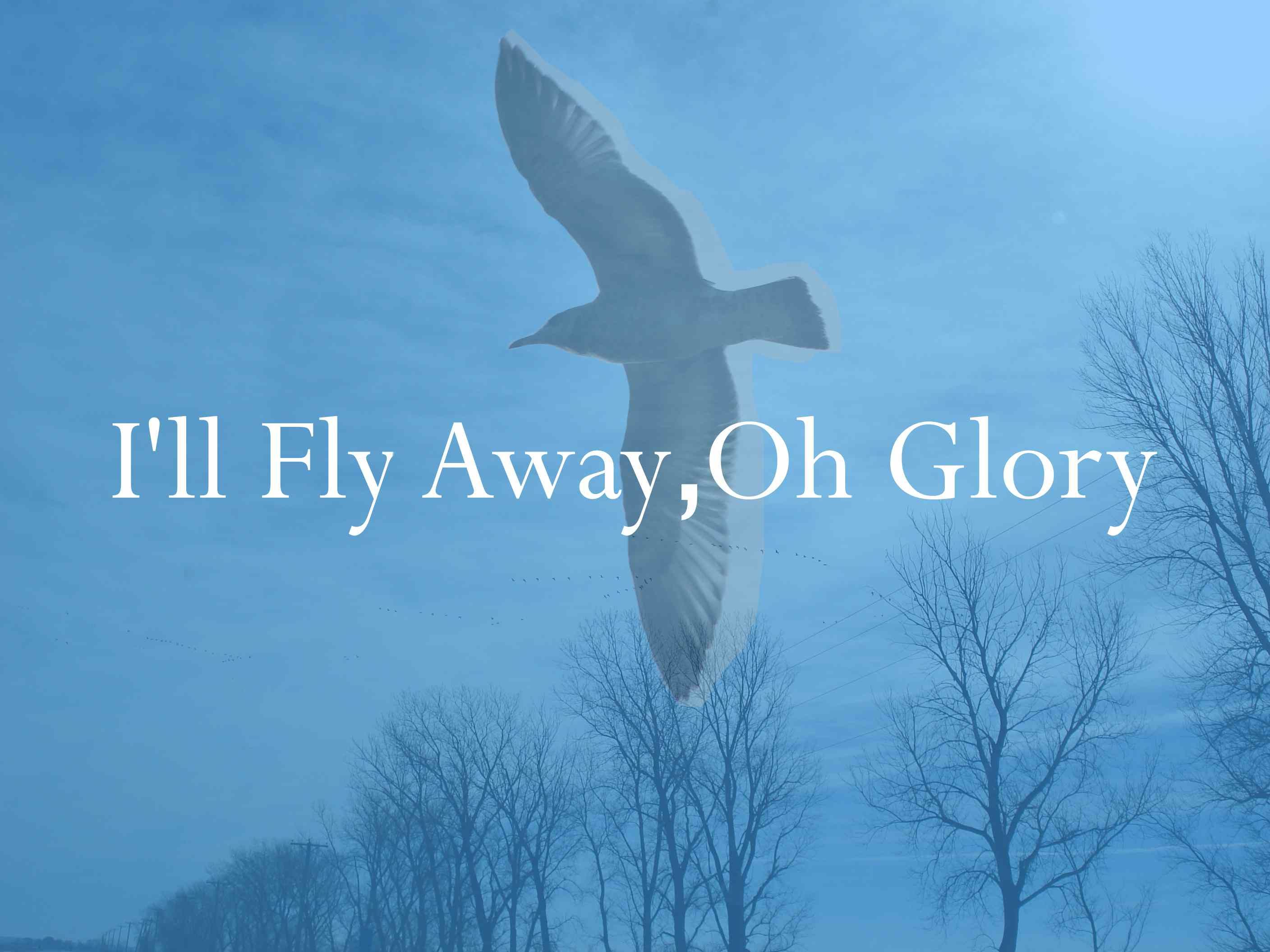 I'll fly away, oh glory Ill Fly Away, Flies Away, Holy Ghost, God Is Good, Sword, Tattoo Ideas, Blues, Wings, Bible