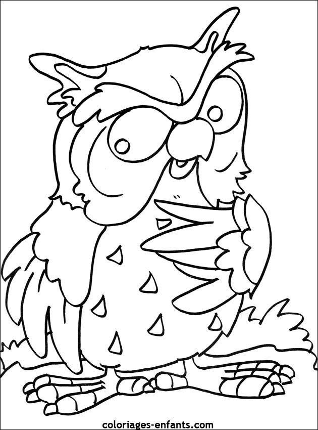 coloriage d'oiseaux - dessin à colorier d'animaux | Coloring pages, Owl templates, Easy drawings