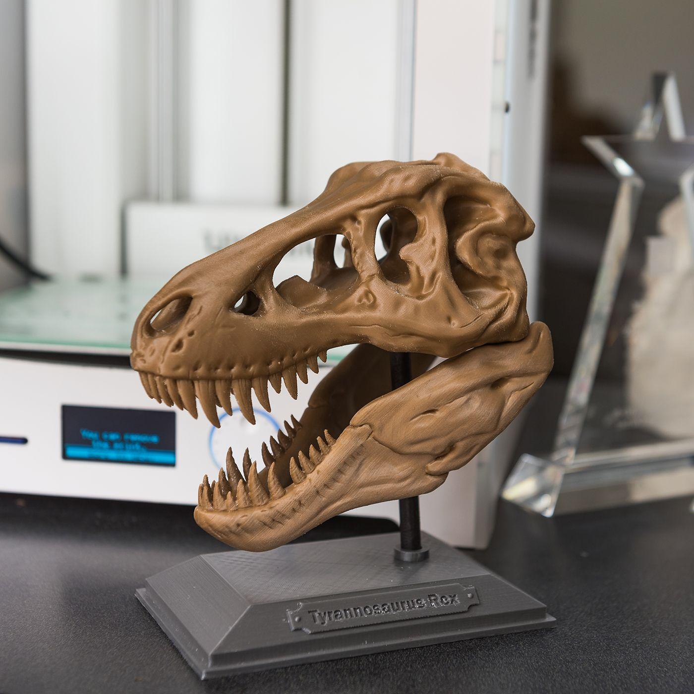 T-Rex, hot off our 3D printer! | 3D Printing | Pinterest | 3d ...
