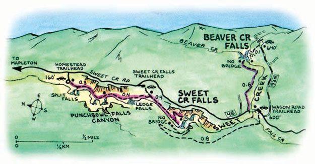 Sweet Creek Falls Trail Map Hiking Pinterest Hiking Florence - Oregon hiking trails map