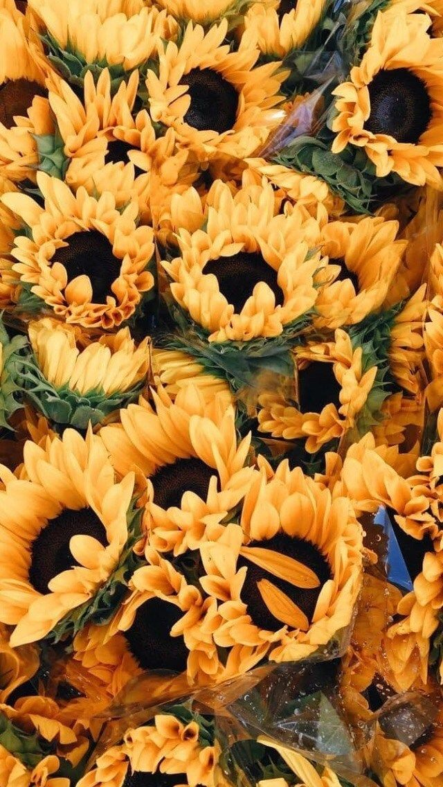 Yellow Flower Aesthetic Background | Wajiflower.co #yellowaesthetic