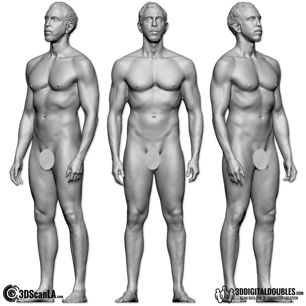 3ddd_model016_fullbody206_img003_new | Anatomy | Pinterest | 3d ...