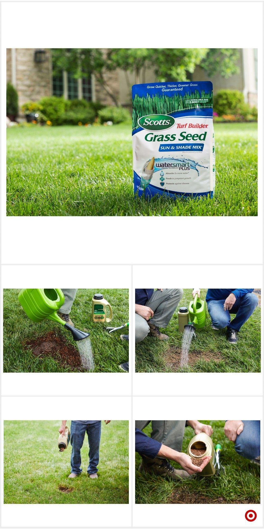 Shop Target For Grass Seed You Will Love At Great Low Prices Free Shipping On Orders Of 35 Or Free S Grass Seed Gardening For Beginners Backyard Landscaping