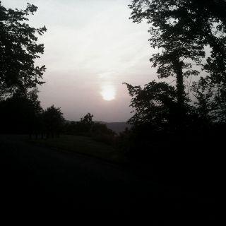 During an evening run