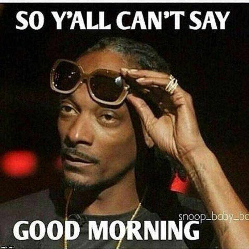 Pin By Safa Clark On Good Morning Meme Funny Good Morning Memes Dog Quotes Funny Super Funny Quotes