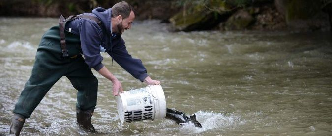 Pennsylvania considers raising cost of fishing licenses