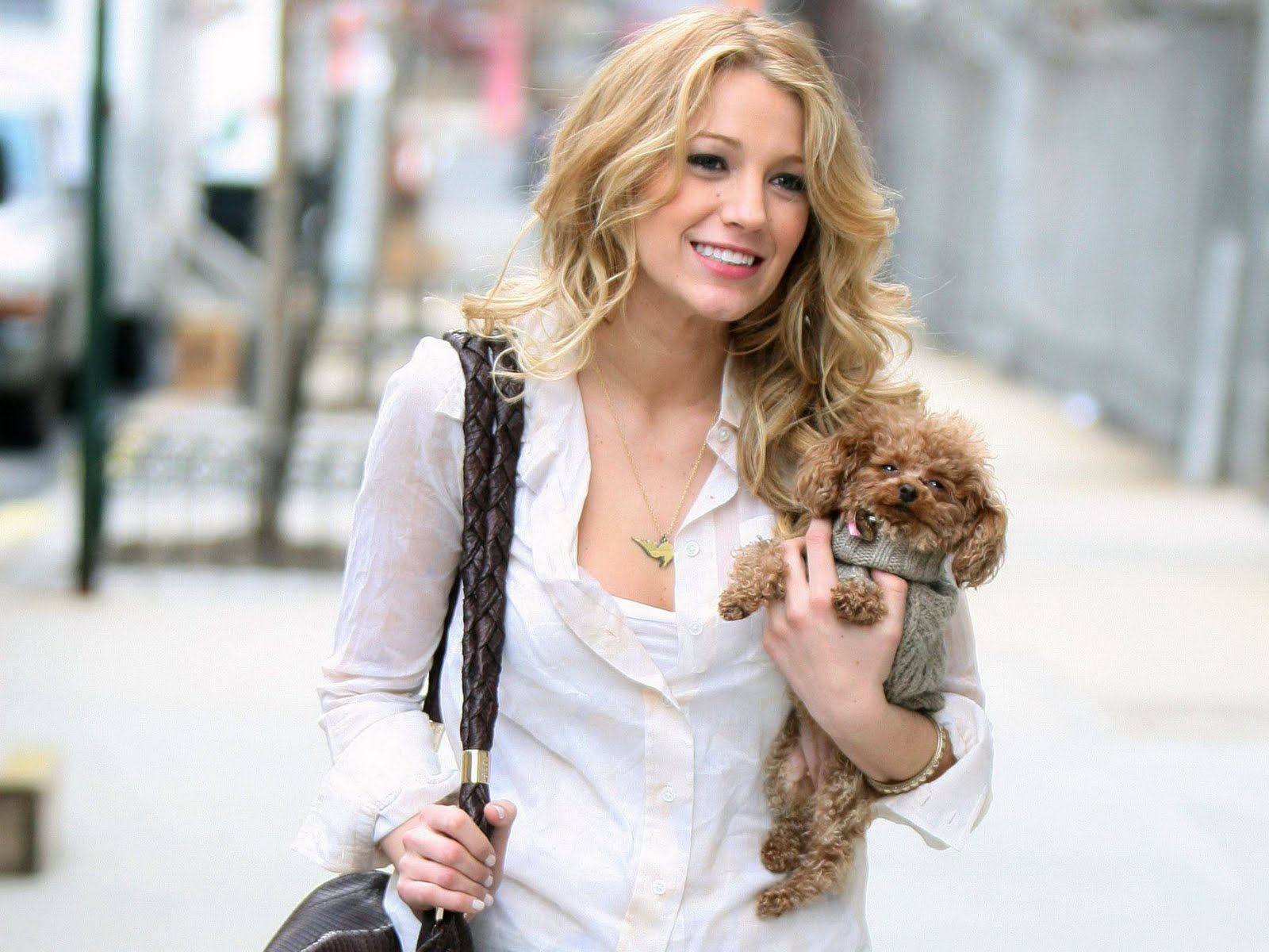 Curly hair and cute puppy uc blake lively uc pinterest
