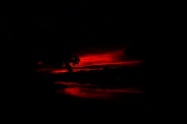 Schäferhund Sunrise von Kristin Castenschiold auf 500px   - sunsets and sunrises -Schäferhund Sun