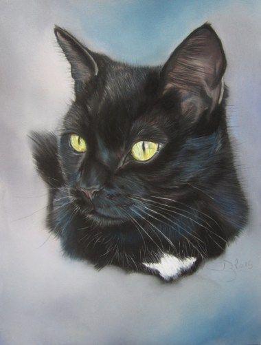 Portrait Chat Noir Dessin De Chat Noir Peintures De Chien