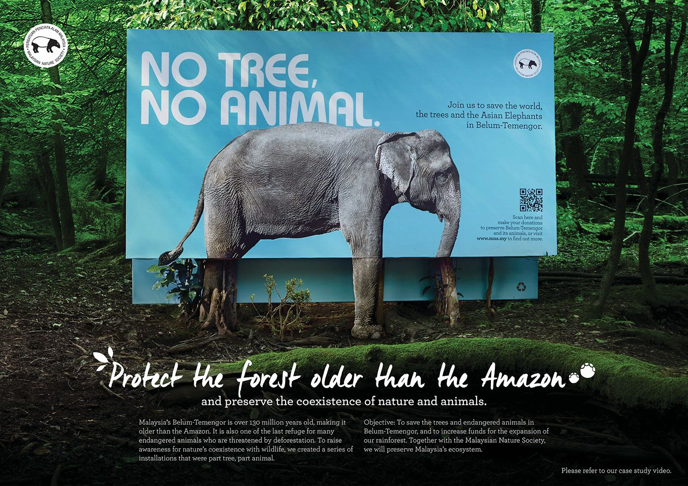 No Tree, No Animal. on Behance