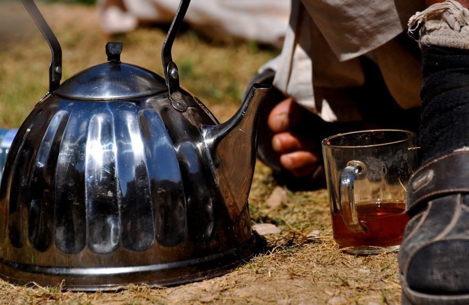 Tea in the fields