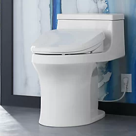 Enjoyable C3 155 Cleansing Elongated Toilet Seat Want Bidet Dailytribune Chair Design For Home Dailytribuneorg