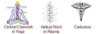 Bildergebnis für kundalini doppel helix