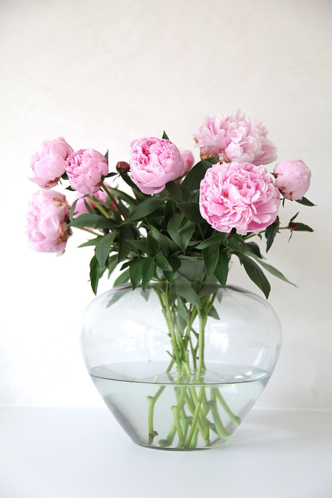 Tips For Arranging Flowers Smt Flower Bomb Peonies Pink Peonies Beautiful Flowers
