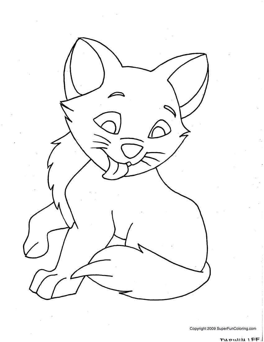 printable kitty cat coloring pages | The Ultimate CAT CARE Guide | Cute kittens | Cat coloring ...