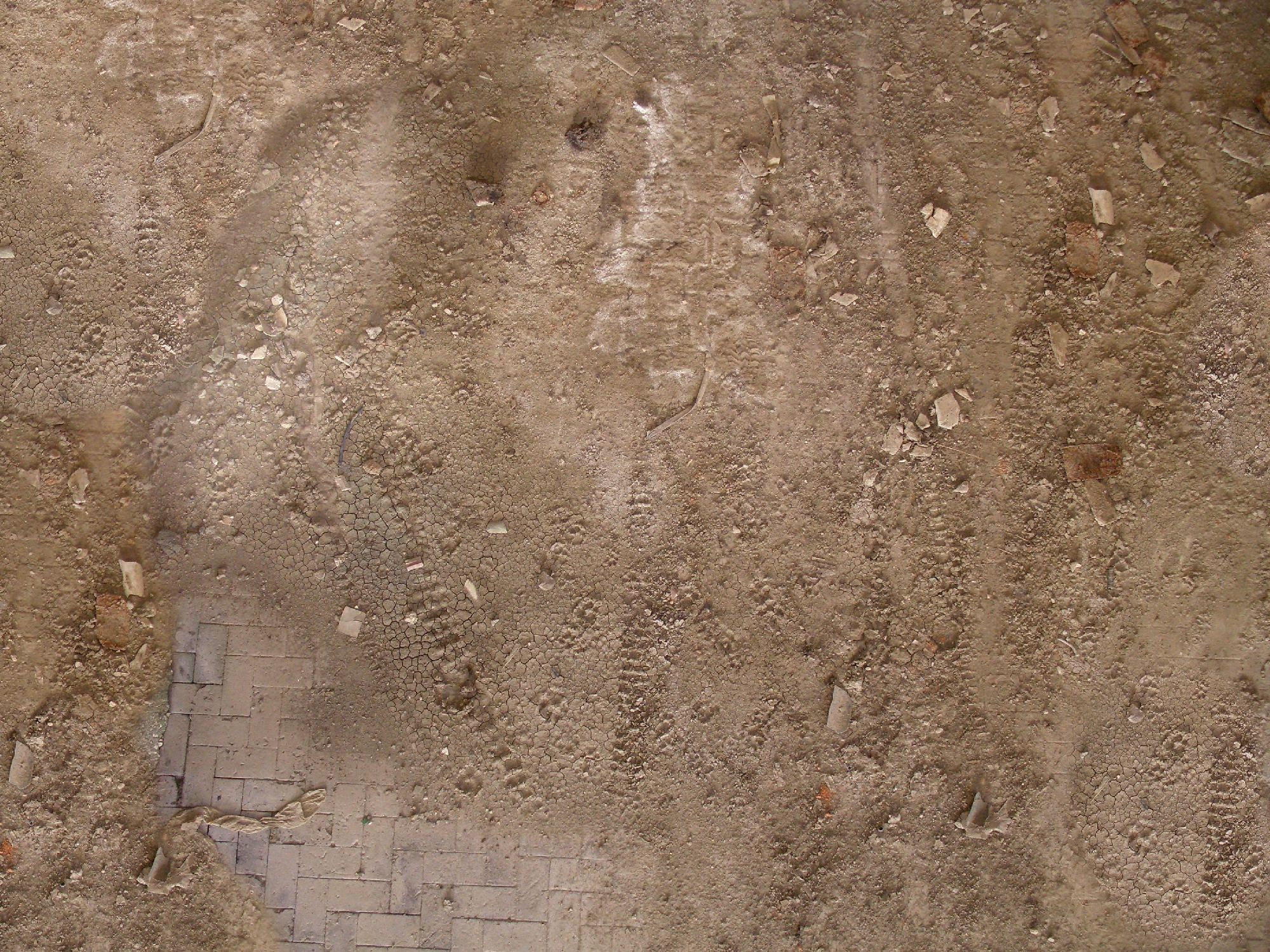 Dirt Ground Texture Example 2 Texture Pinterest