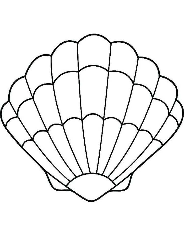 Shell Coloring Pages For Adults. Shellfish are aquatic