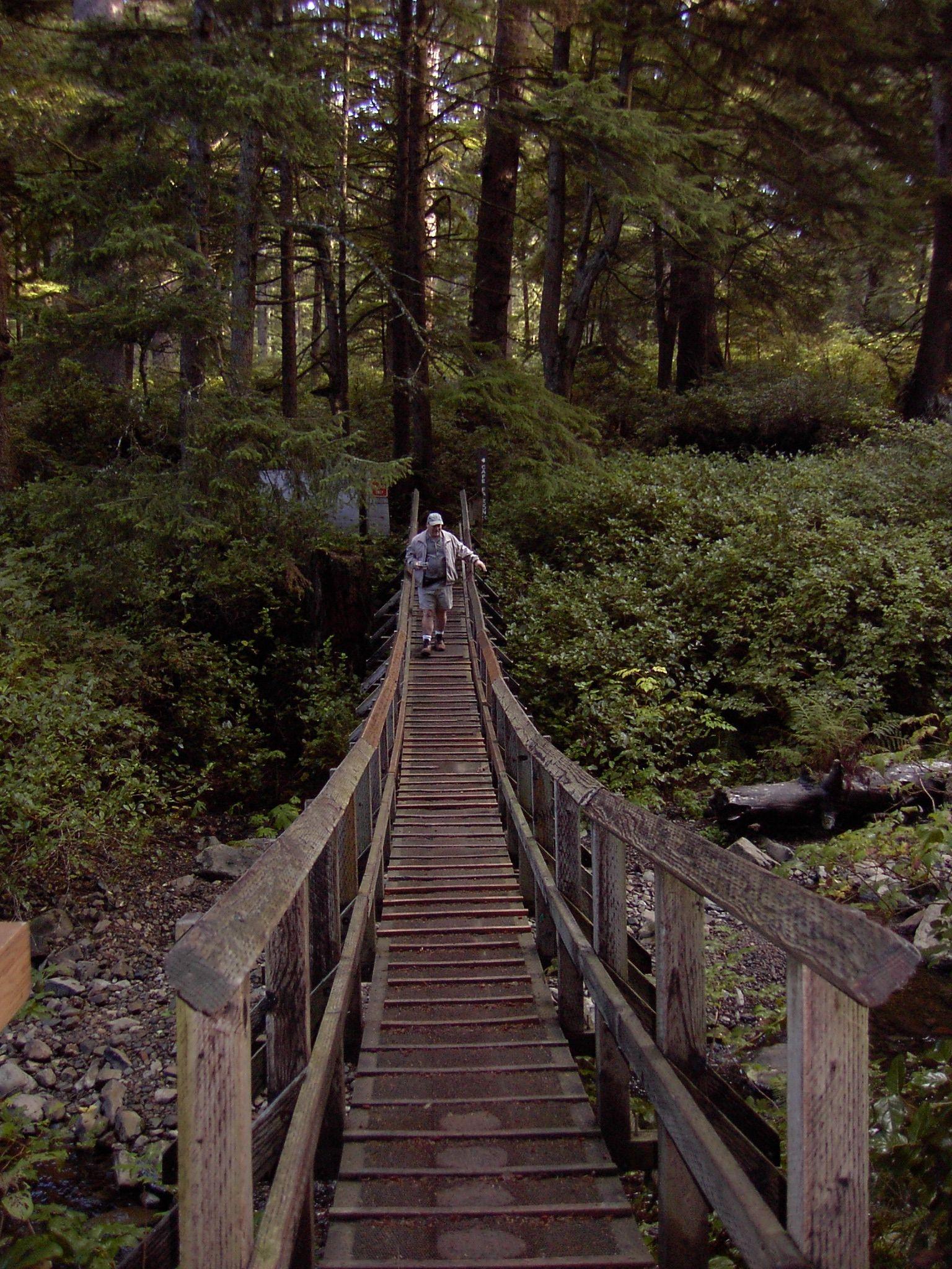 Cannon Beach Oregon Forest Trail
