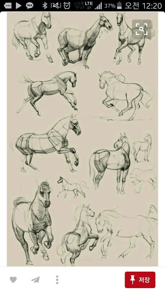Pin von Lee Hoppe Groznik auf drawing tutorials | Pinterest ...
