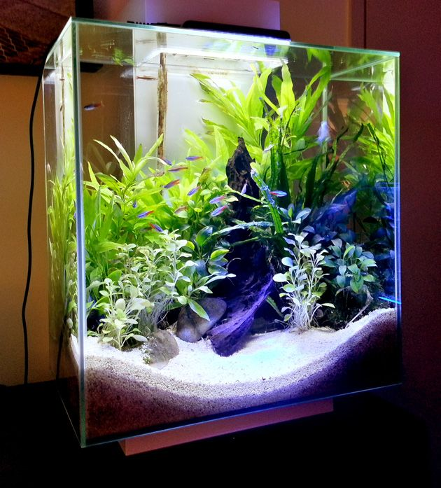 10 gallon fish tank stand ideas for your aquarium. Black Bedroom Furniture Sets. Home Design Ideas