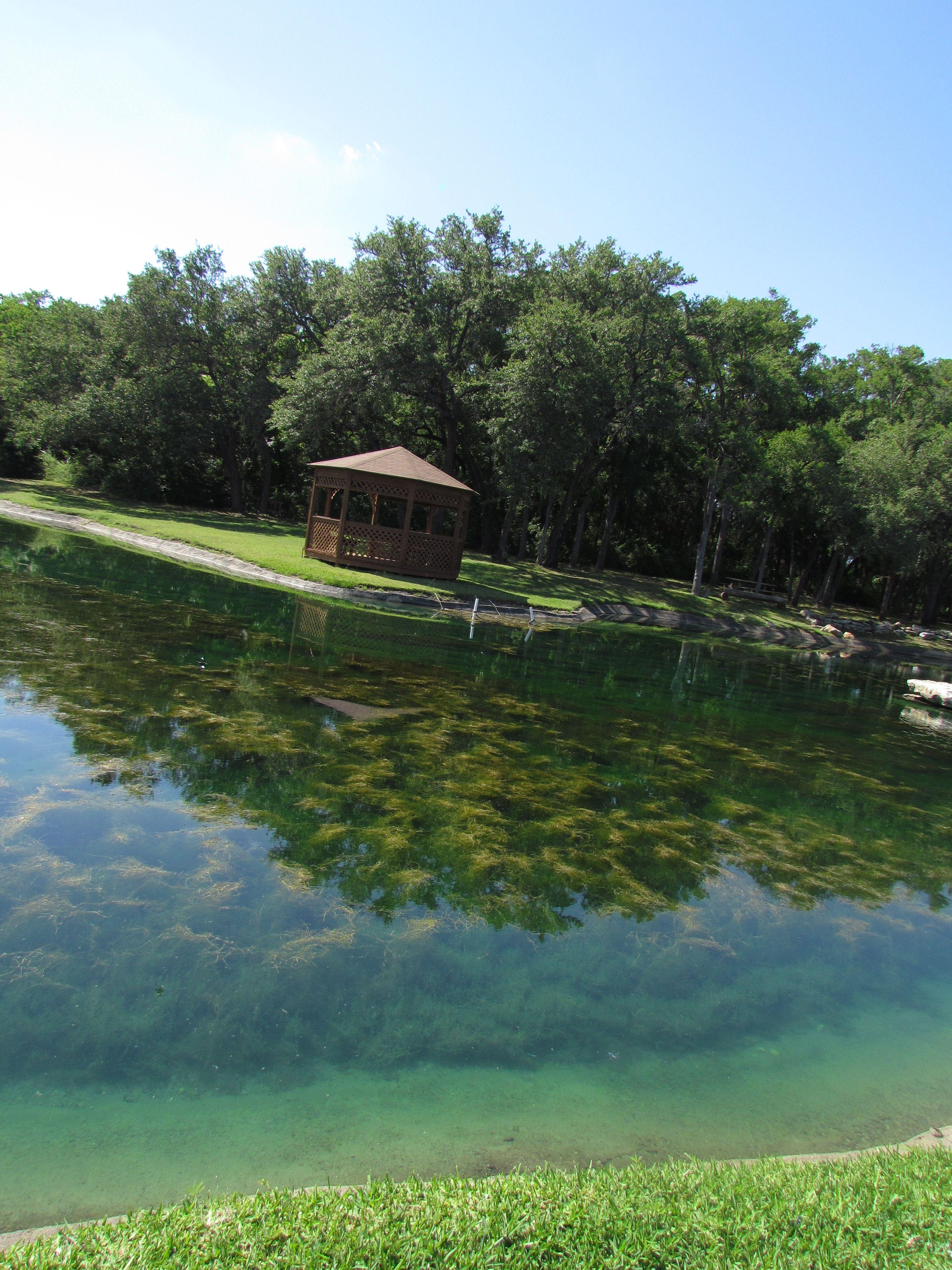 gazebo by pond