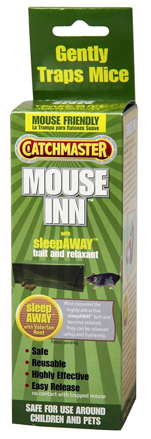 Catchmaster 601 Mouse Inn Gentle Mouse Trap with Sleepaway #mousetrap Catchmaster 601 Mouse Inn Gentle Mouse Trap with Sleepaway Sale 50% Now only $5 #mousetrap Catchmaster 601 Mouse Inn Gentle Mouse Trap with Sleepaway #mousetrap Catchmaster 601 Mouse Inn Gentle Mouse Trap with Sleepaway Sale 50% Now only $5 #mousetrap Catchmaster 601 Mouse Inn Gentle Mouse Trap with Sleepaway #mousetrap Catchmaster 601 Mouse Inn Gentle Mouse Trap with Sleepaway Sale 50% Now only $5 #mousetrap Catchmaster 601 M #trapsworkout