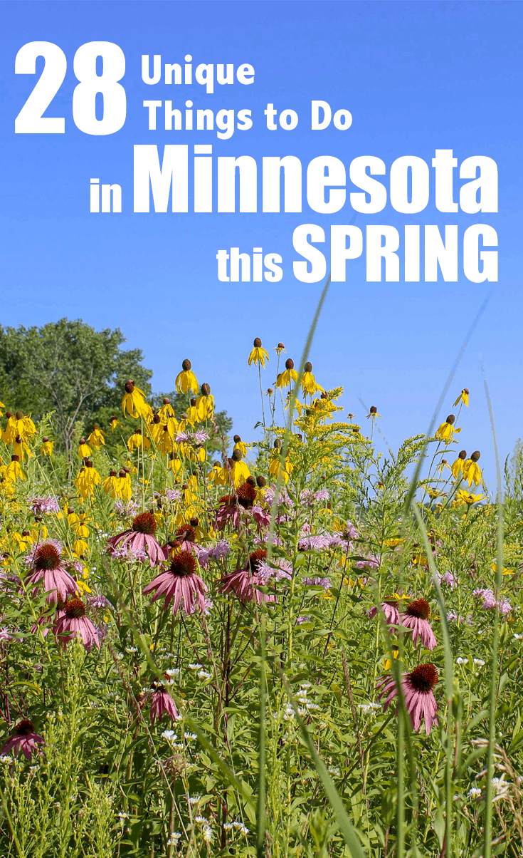Spring in Minnesota   28 Amazing Things to Do All Season Long