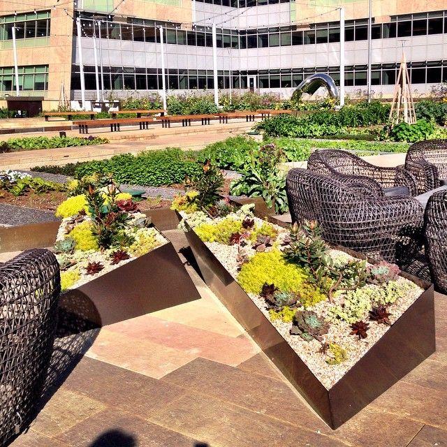 STEM Kitchen & Garden Garden, Sf restaurants, Outdoor