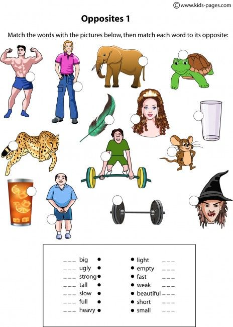 Opposites Worksheets For Kindergarten Pdf - antonym worksheets ...
