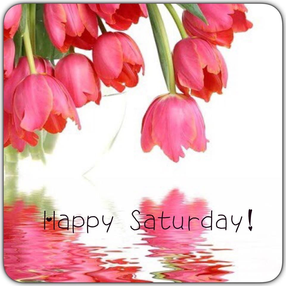 Happy saturday flowers good morning saturday saturday quotes good happy saturday flowers good morning saturday saturday quotes good morning dhlflorist Images