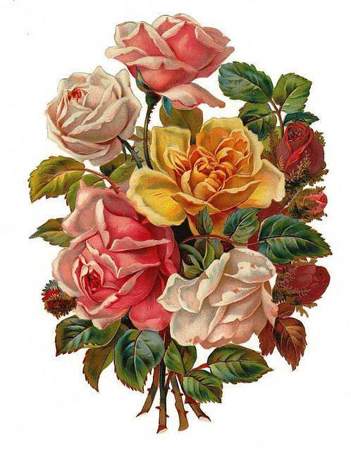 Victorian Flowers Sticker Vintage Flowers Victorian Flowers Flower Clipart