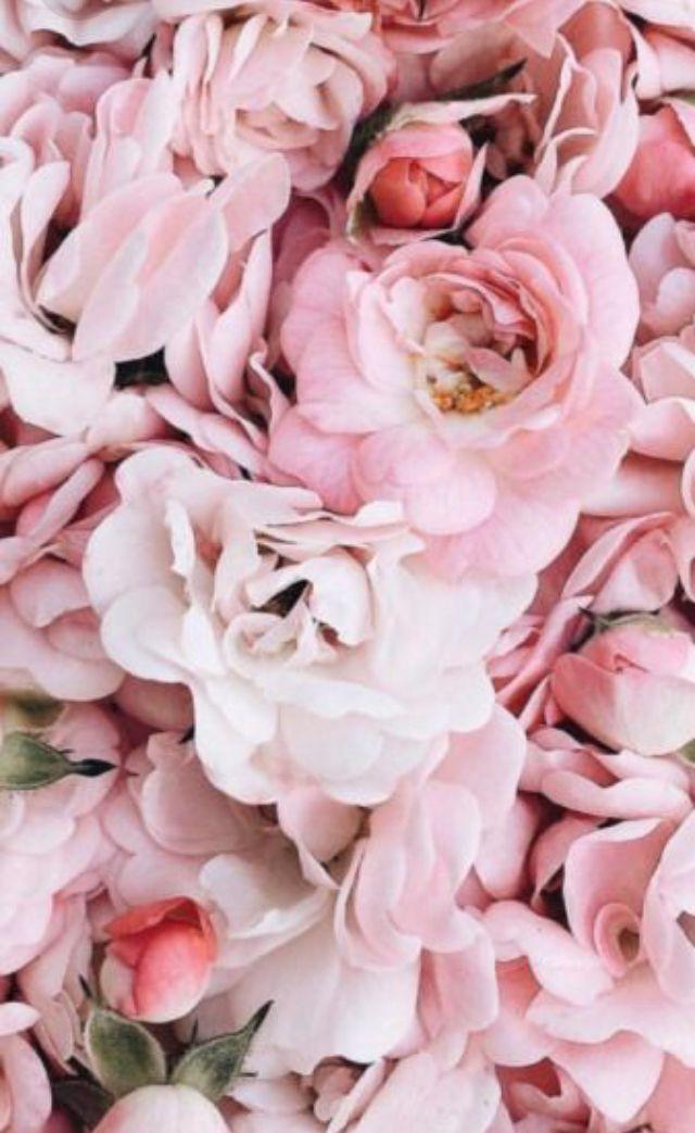 Famous 42 Flower Wallpaper Photo Ideas Pictures Inspiration ...