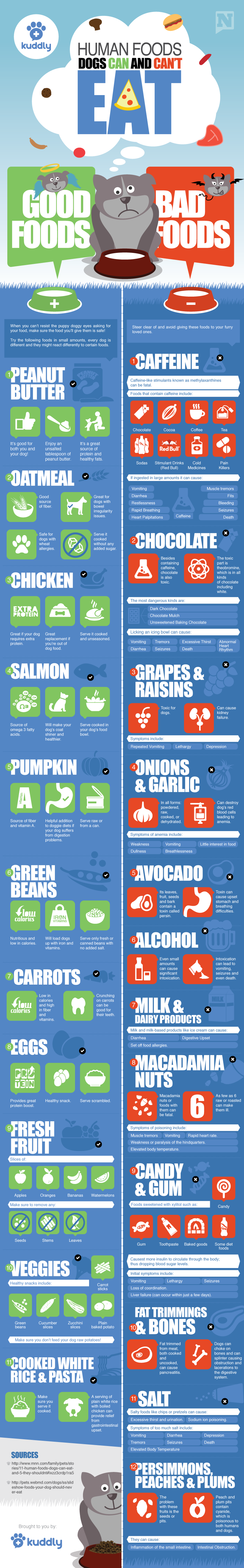 what fruits can dogs eat a list - Google Search | Pertinent Pet ...