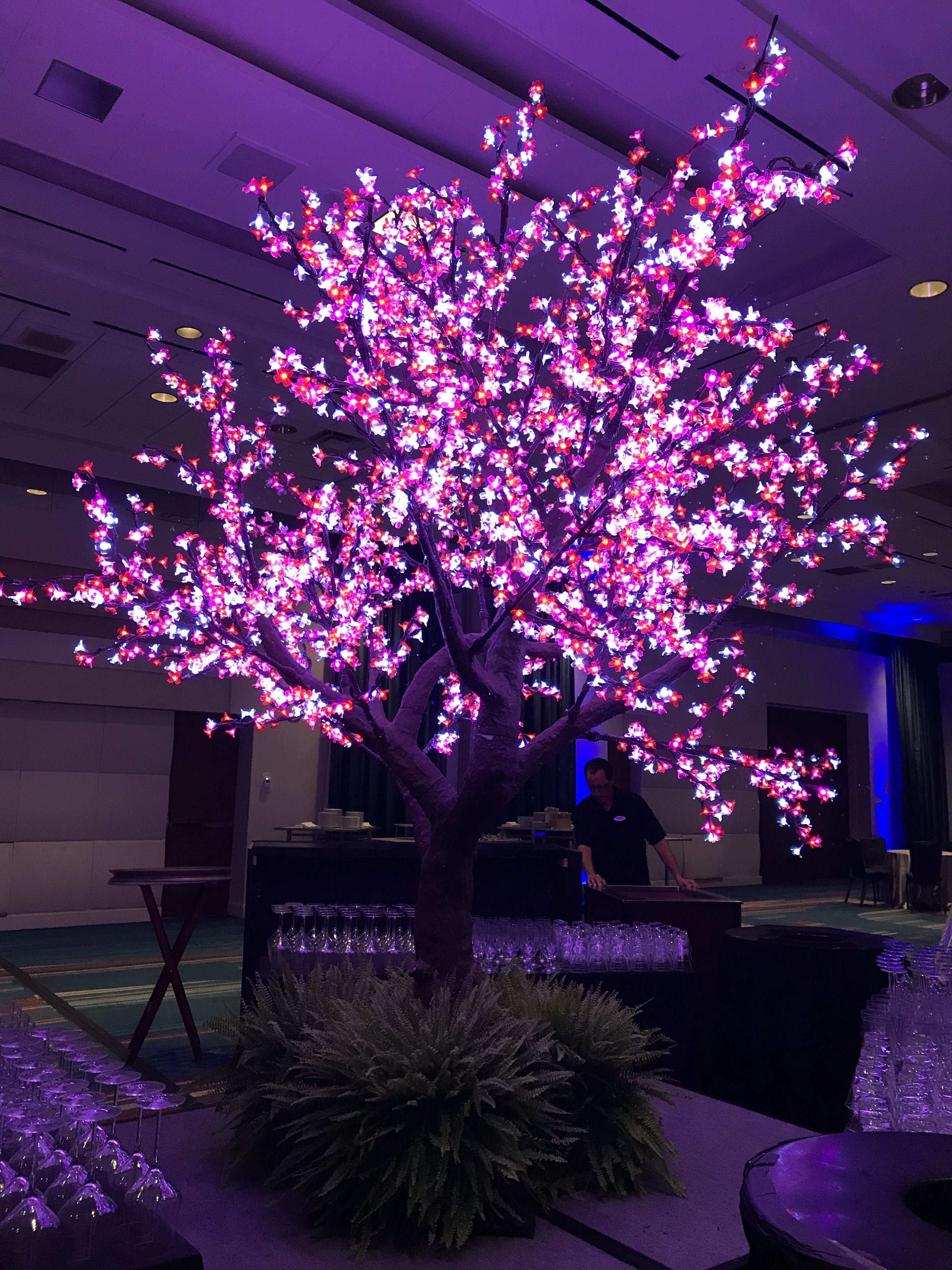 Led Cherry Blossom Trees Add Beauty To Any Room Floridaeventdecor Event Eventmanagement Eventmarketing Eventplanning Event Decor Blossom Trees Event