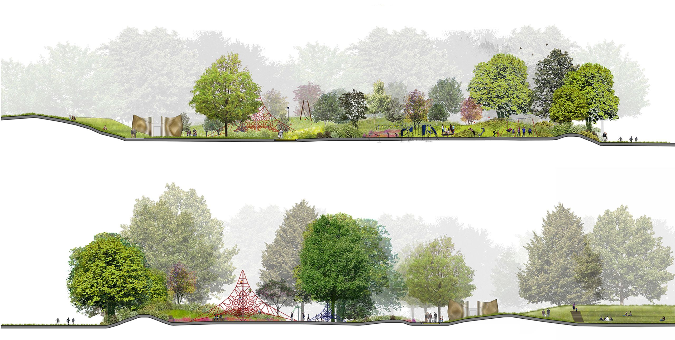Landscape section elevation images for Landscape architecture
