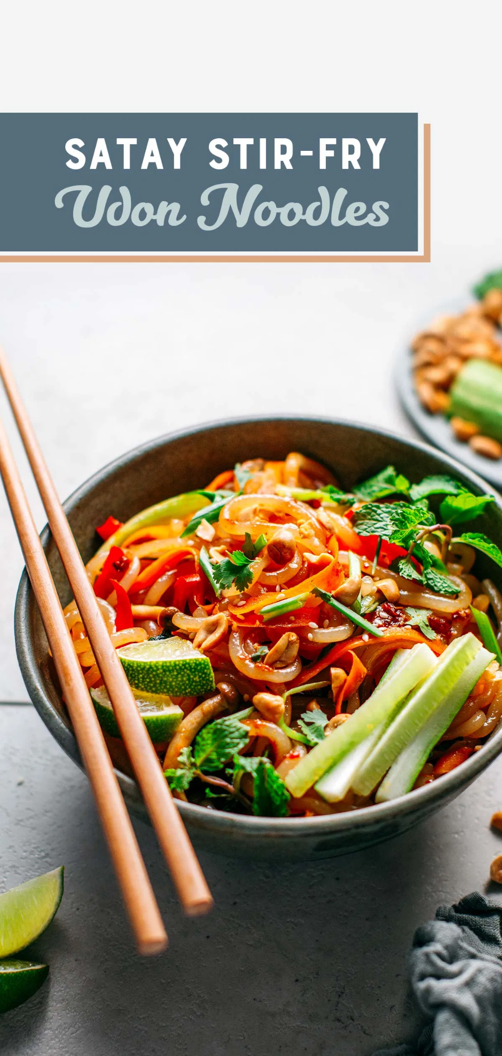 Satay Stir Fry Udon Noodles Full Of Plants Recept