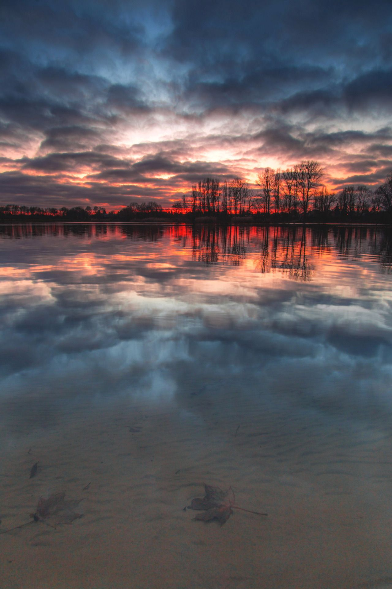 Sunken by Denny Bitte - #berlin #Cloudy #Germany #Lake, #Landscape #Leaves #Nature #on #ORIGINAL: #Photographers #reflections #Sky #Sunset #tumblr
