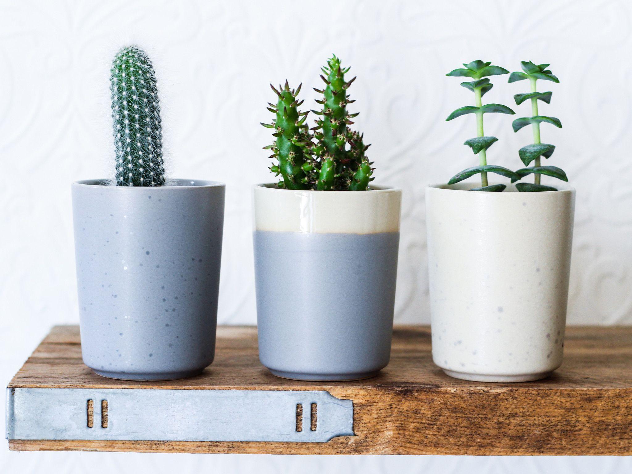 mini plant pot a stylish ceramic from