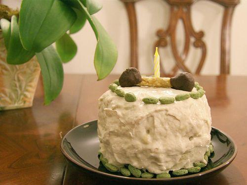 Banana Birthday Cake For Dogs ~ Peanut butter banana and carrot birthday cake for dogs it s
