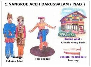 Rumah Adat Dan Baju Adat Di Indonesia