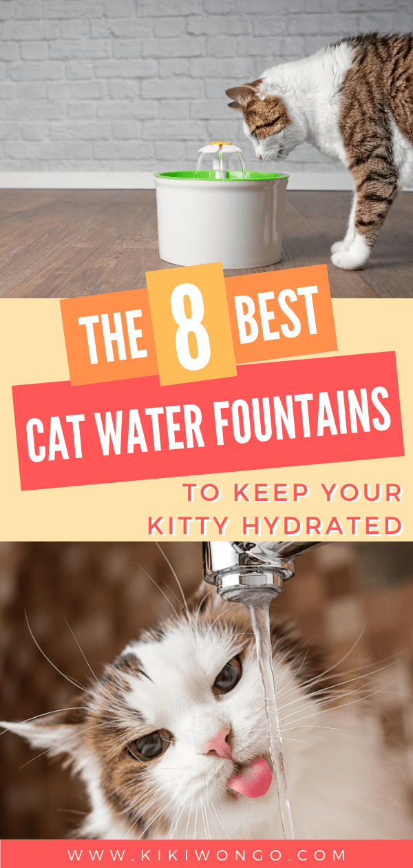 The 8 Best Cat Water Fountain To Keep Your Kitty Hydrated In 2020 Cat Water Fountain Cat Fountain Cool Cats