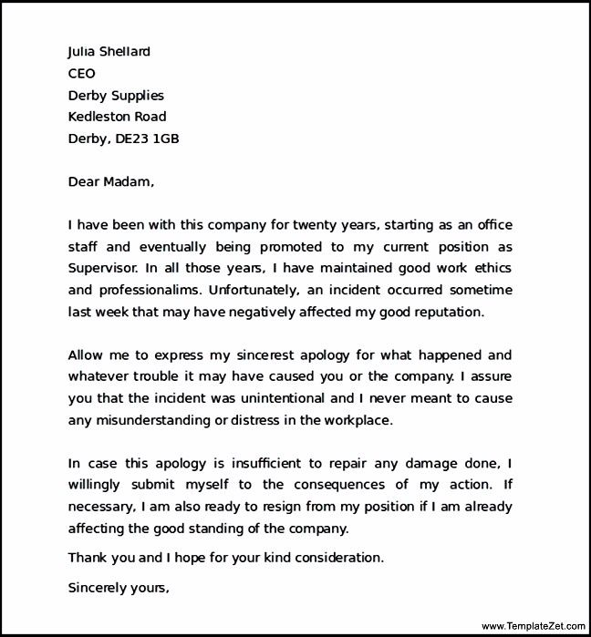 Superb Apology Letter Boss For Mistake Templatezet Business Sample  Business Apology Letter For Mistake