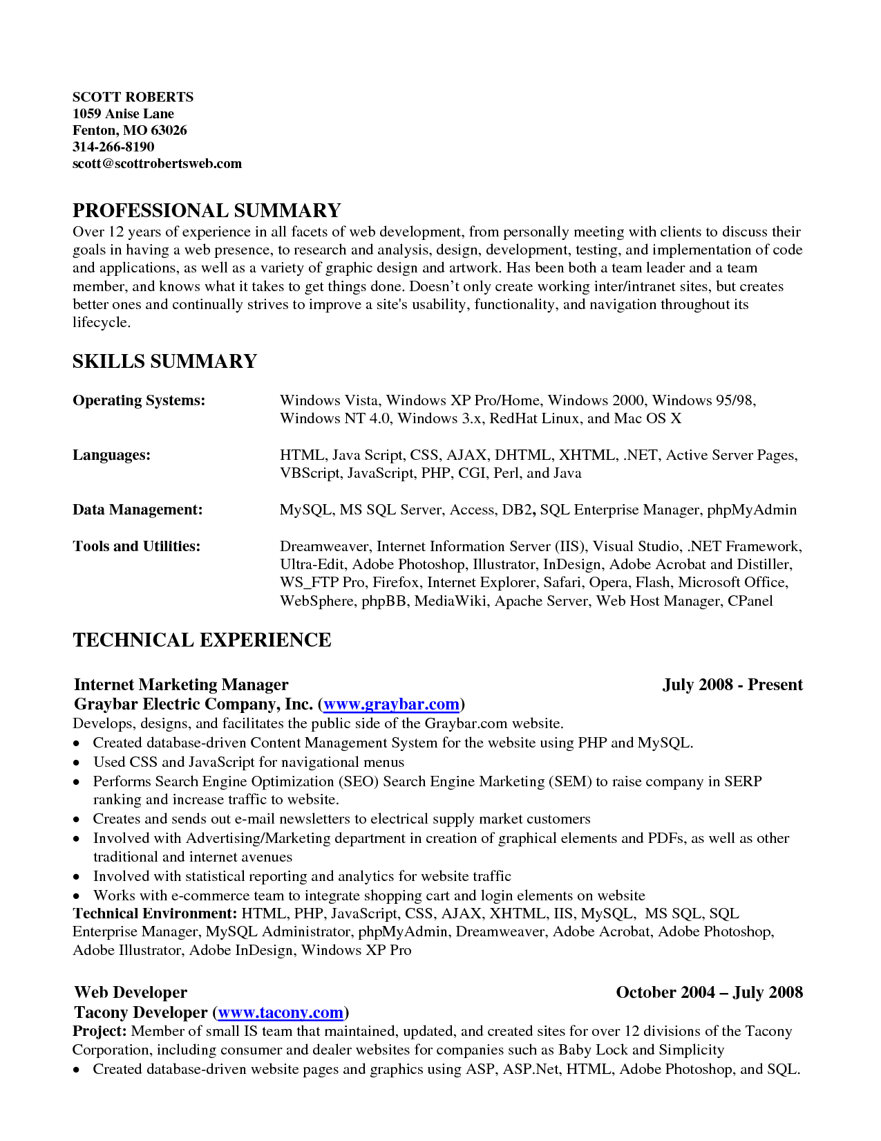 Example Of Skills Summary For Resume Resume Summary