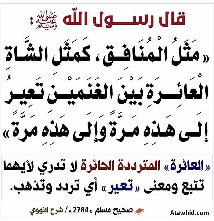المنافقين Islamic Quotes Peace Be Upon Him Words