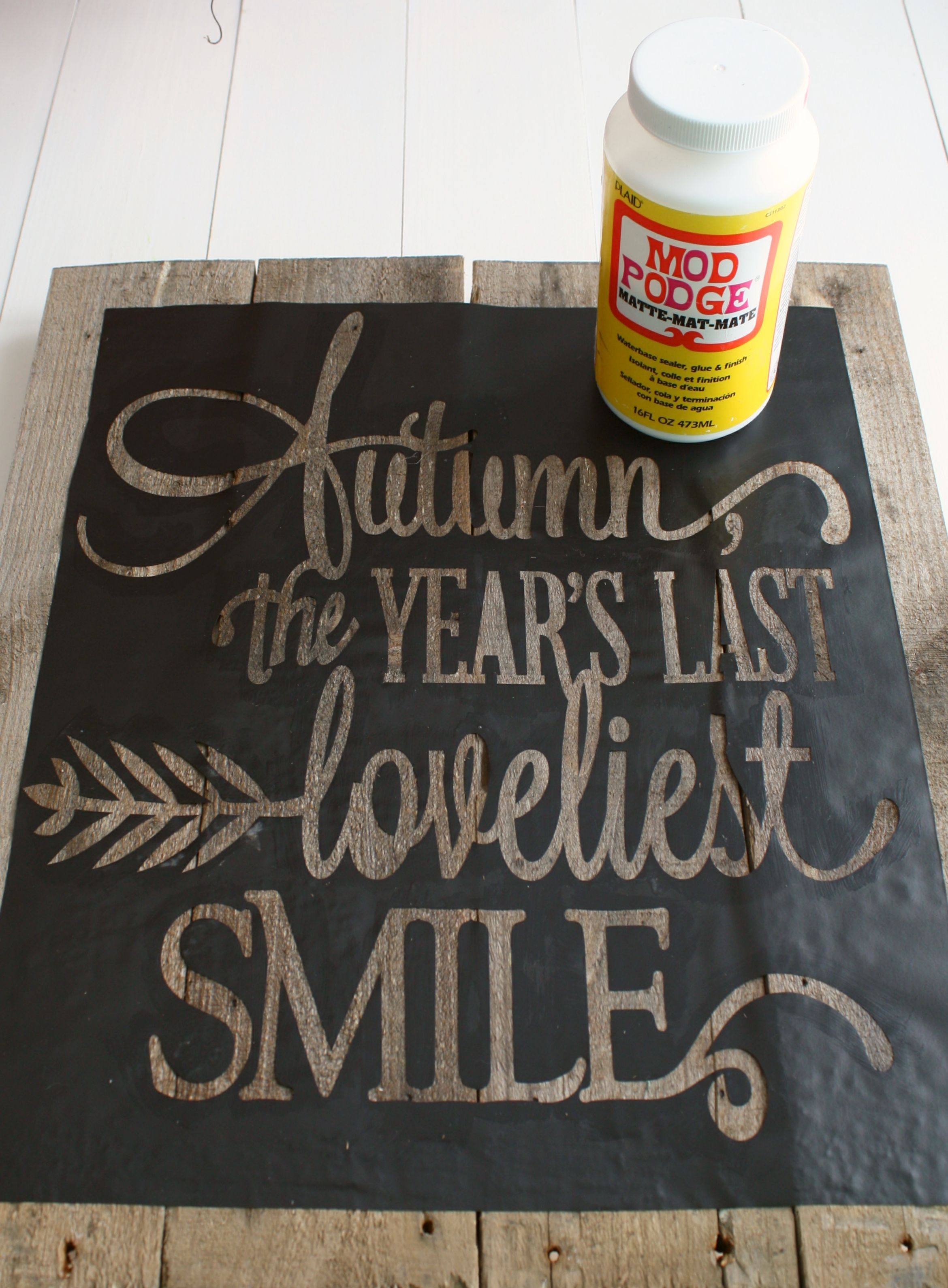 Use Mod Podge To Prevent Paint Bleeding When Using